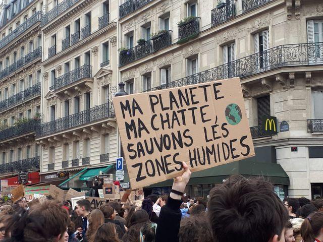 greenup-ecofeminisme